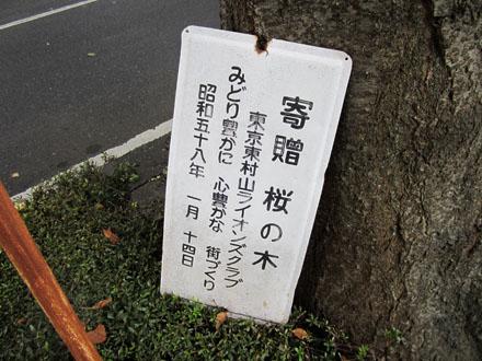 ある桜の木の側にこんな看板があった