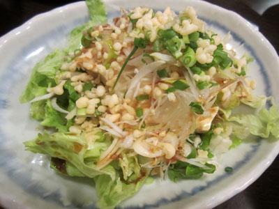 和風ねぎ豆腐サラダ