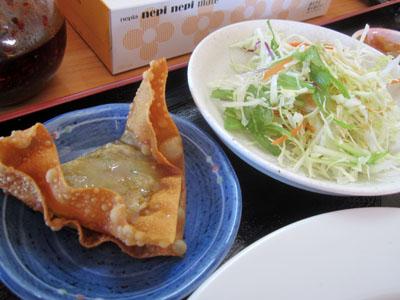 揚げ物とサラダ
