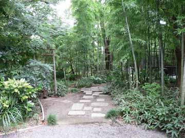 門をくぐると竹林