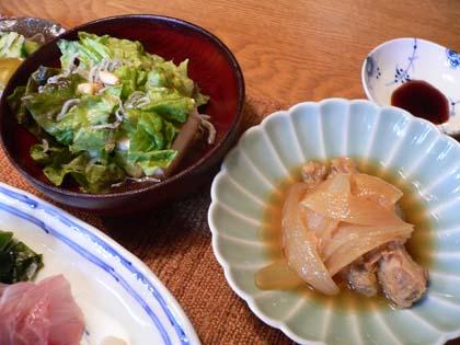 豆腐サラダと鶏とタマネギのピリ辛煮